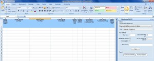 SAP HCM Org Analyse als Winshuttle Excel Add-In