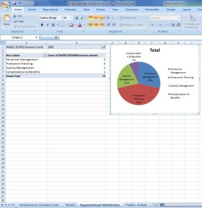 Auswertung des SAP Org Analyse Results in Excel